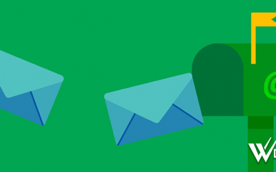 Sendgrid and the Importance of Receiving Notification Emails From Your Website